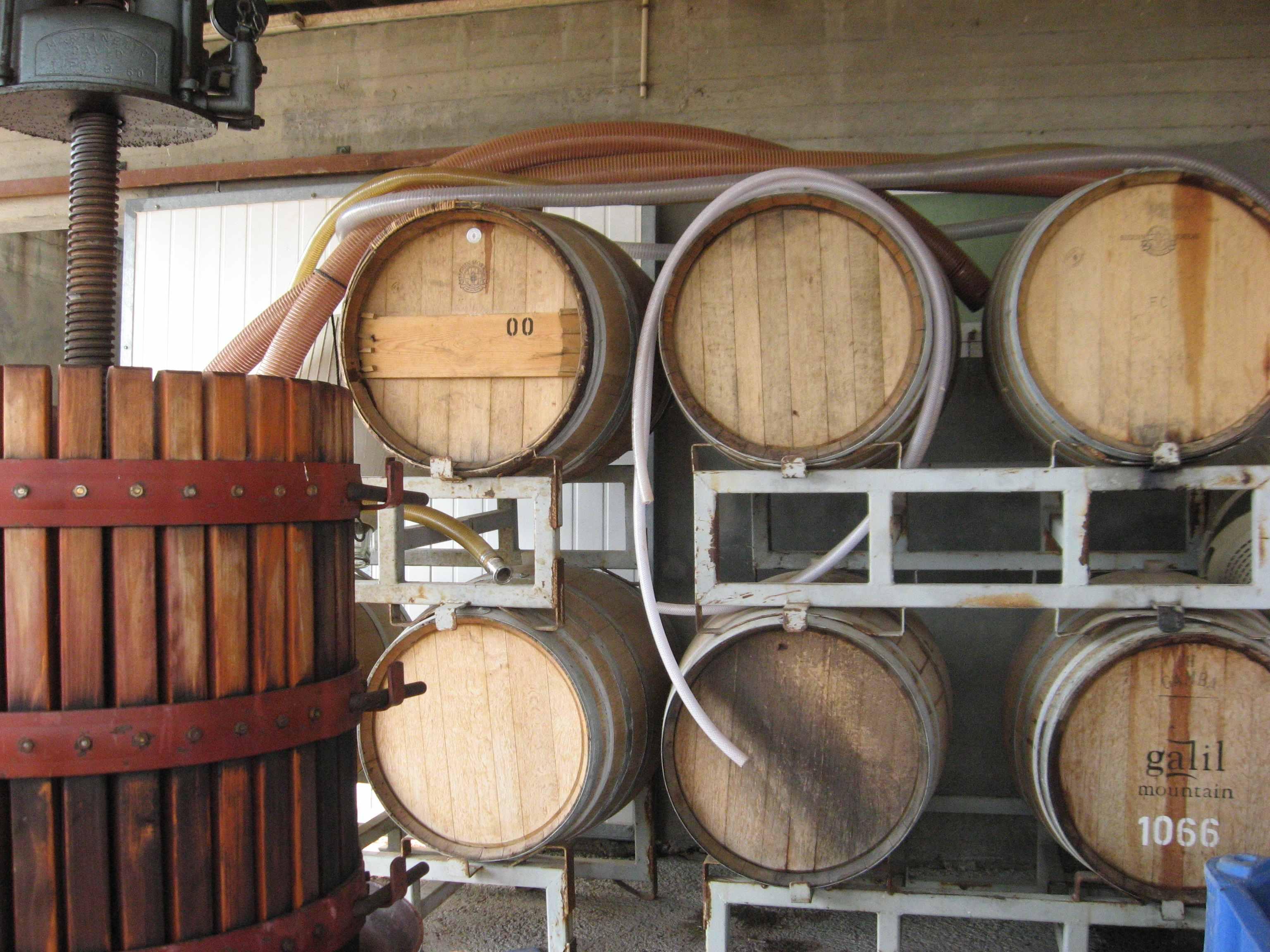 Une cave a vins au Golan